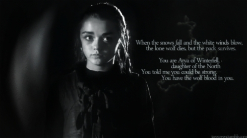 Arya-Stark-game-of-thrones-18154535-500-281